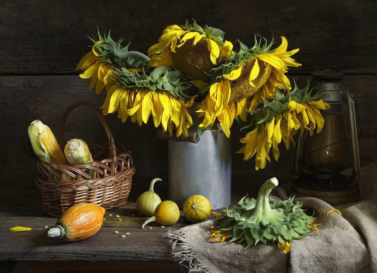 Jesienne zestawy witamin – wygoda czy lenistwo?